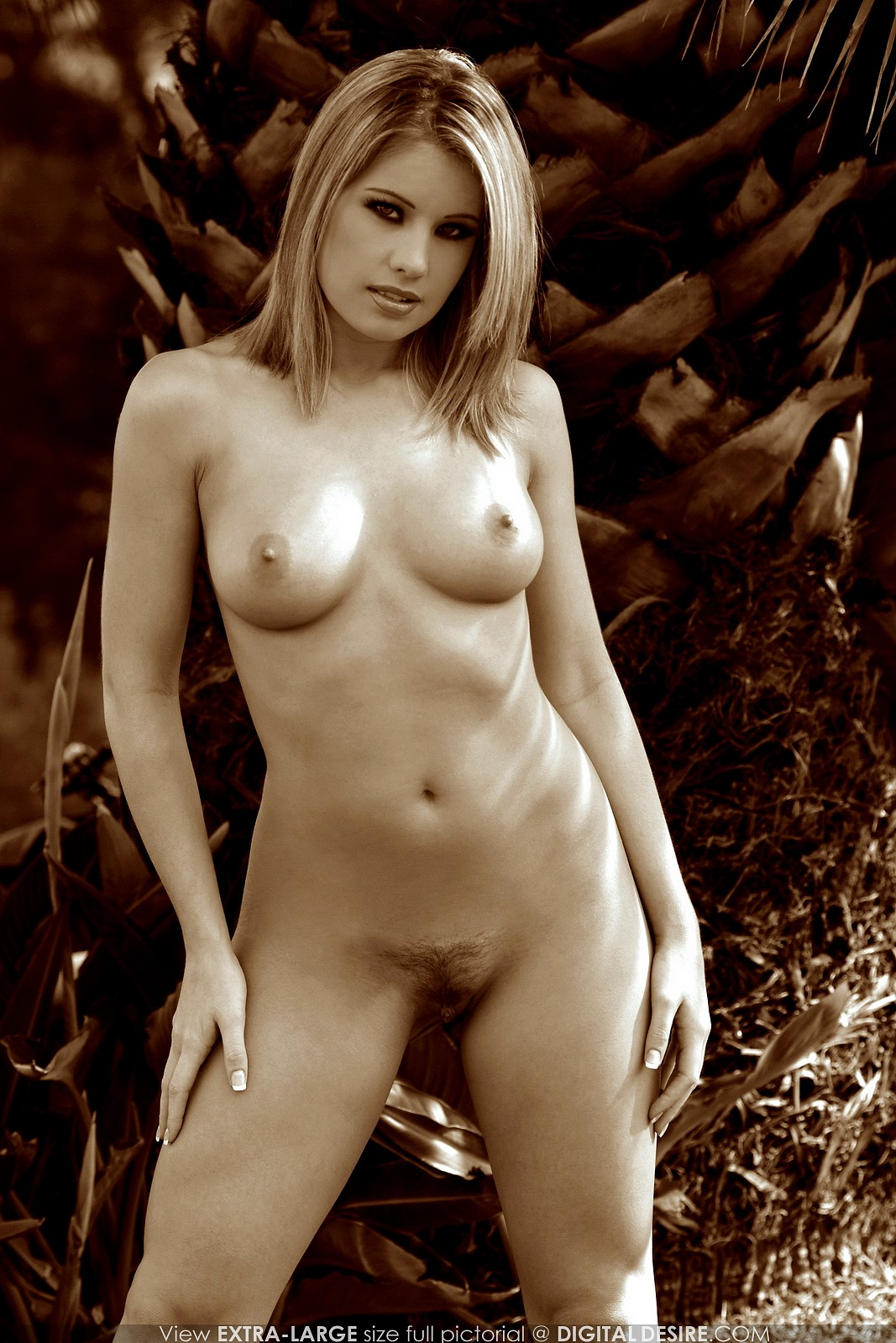 ashley brookes art nudes outdoors / sexy models